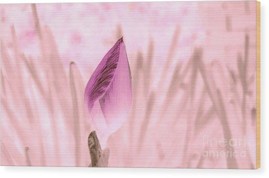 Color Trend Flower Bud Wood Print