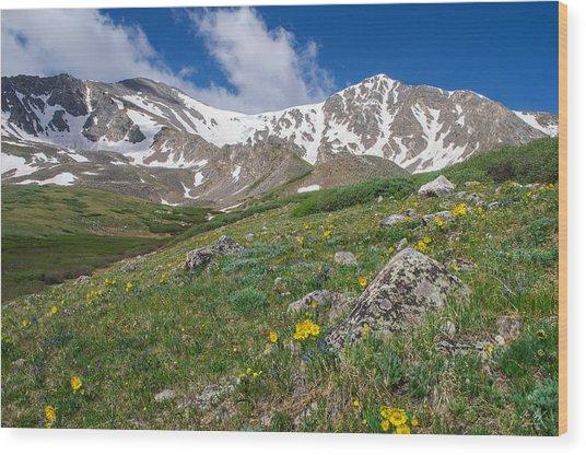 Colorado 14ers Grays Peak And Torreys Peak Wood Print