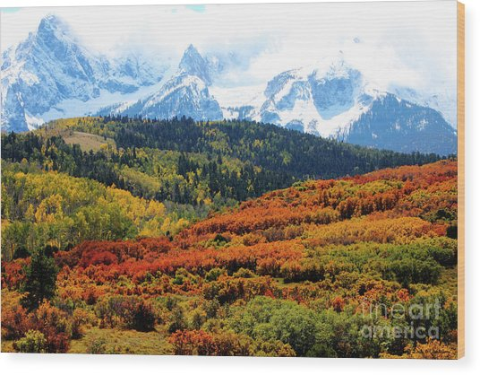 Colorado Autumn 2016 San Juan Mountains  Wood Print