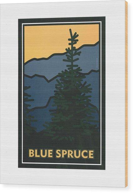 Colorado Blue Spruce Wood Print
