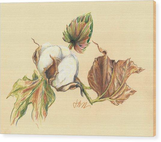 Colored Pencil Cotton Plant Wood Print