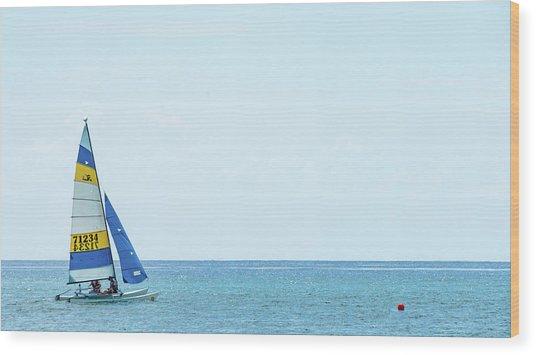 Colorful Catamaran 3 Delray Beach Florida Wood Print