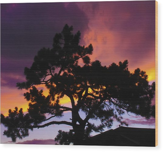 Colorful Colorado Sunset Wood Print