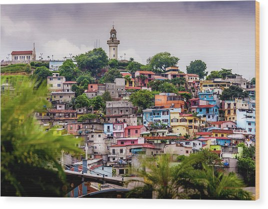 Colorful Houses On The Hill Wood Print