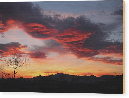 Colorful Dawn Over New Mexico's Peloncillo Mountains Wood Print