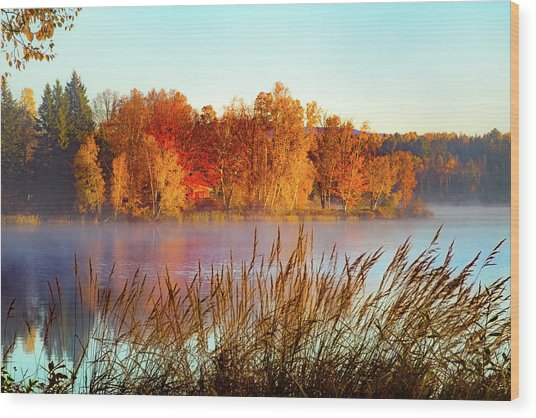 Colorful Dawn On Haley Pond Wood Print