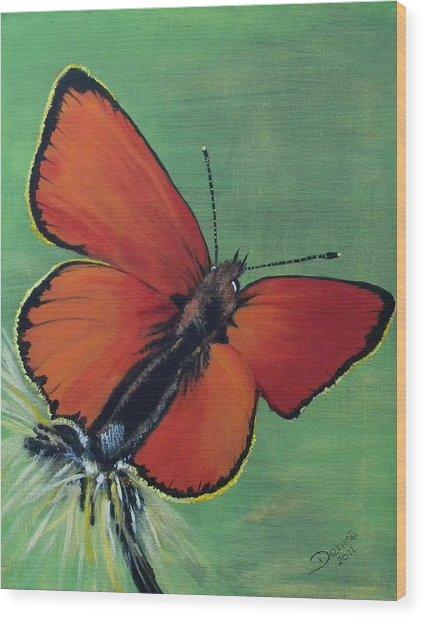 Colorful Flight Wood Print