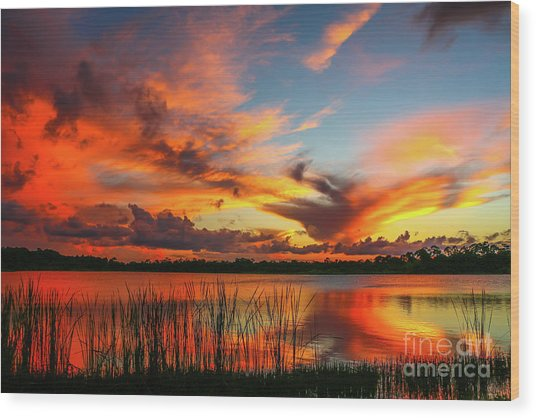 Colorful Fort Pierce Sunset Wood Print