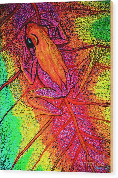 Colorful Frog On Leaf Wood Print by Nick Gustafson