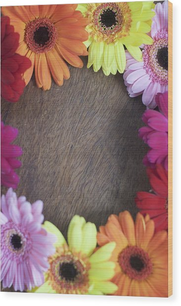 Colorful Gerbera Daisies In A Circle Wood Print