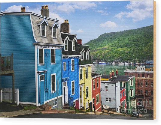 Colorful Houses In St. John's Wood Print