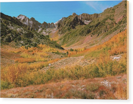 Colorful Mcgee Creek Valley Wood Print