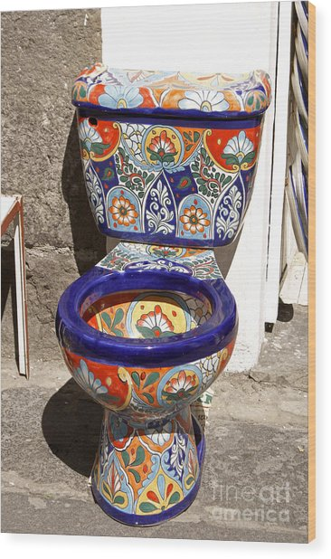 Colorful Mexican Toilet Puebla Mexico Wood Print