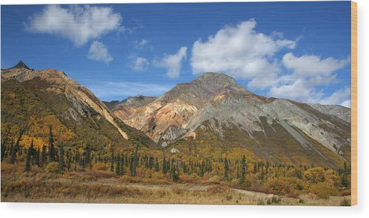 Colorful Mountains Wood Print by Dave Clark