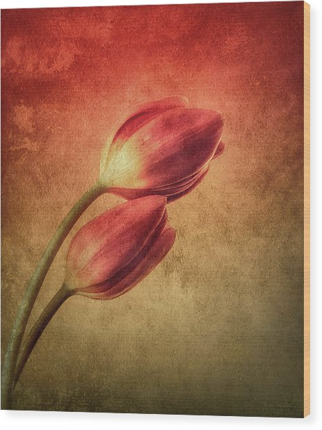 Colorful Tulips Textured Wood Print