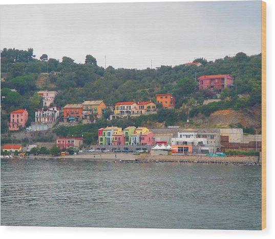 Colors Along The Coast Wood Print