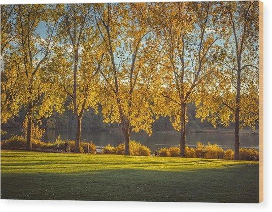 Colors Of Fall Wood Print by Mauricio Ricaldi