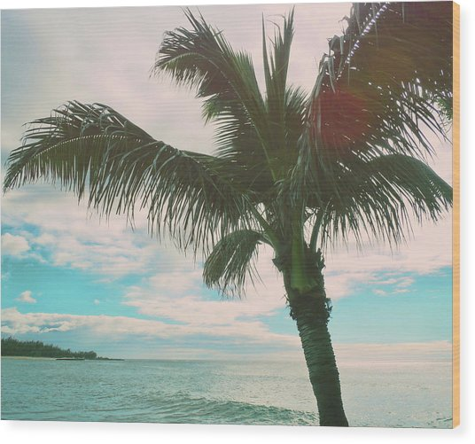 Colors Of Hawaii Wood Print by JAMART Photography
