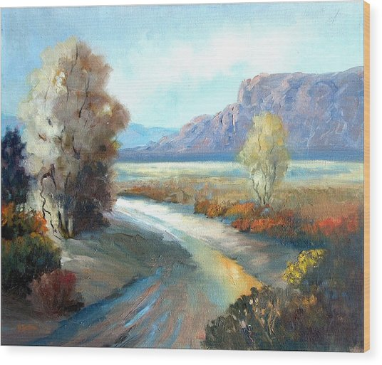 Colors Of The Desert Wood Print by Sally Seago
