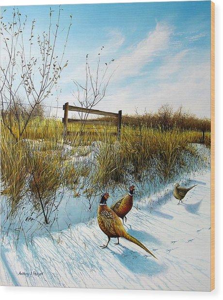 Colors Of Winter - Pheasants Wood Print