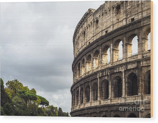 Colosseum Closeup Wood Print
