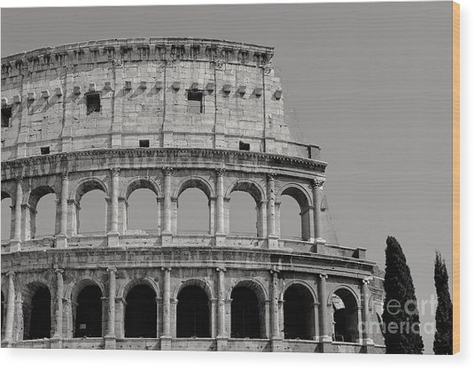 Colosseum Or Coliseum Black And White Wood Print