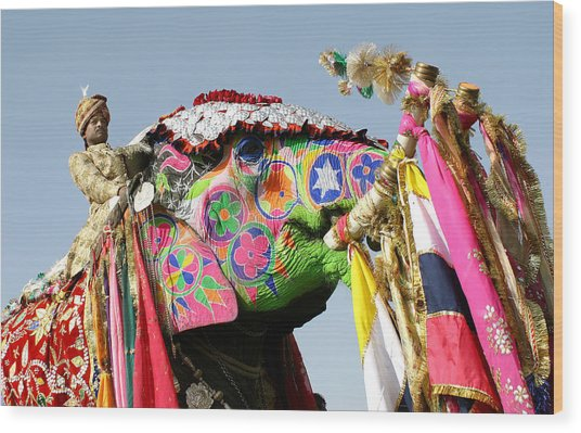 Colourful Elephants At Elephant Festival Wood Print by John Sones