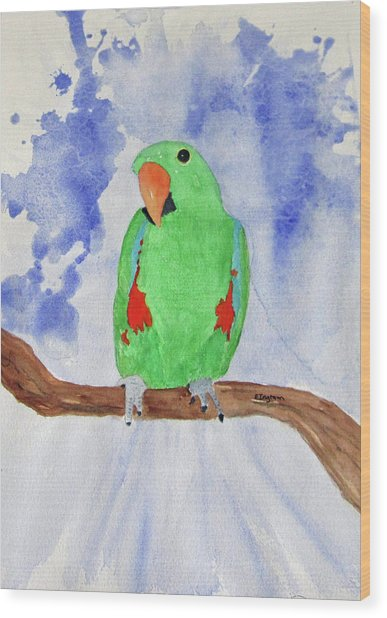 Female Parrot Wood Print