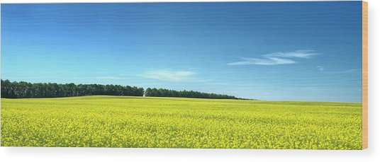 Wood Print featuring the photograph Colours Of Summer. Voznesenske, 2015. by Andriy Maykovskyi