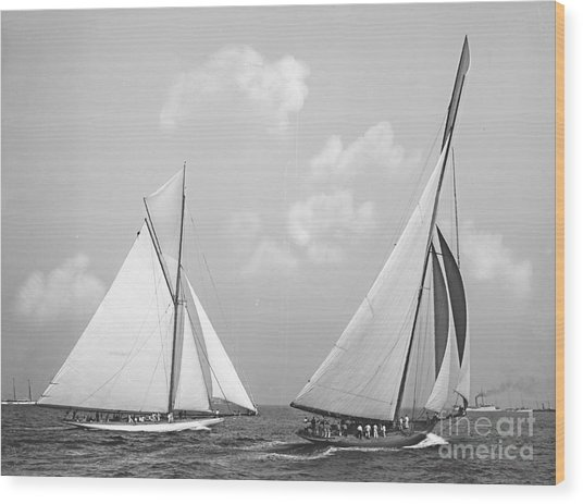 Columbia And Shamrock Race The Americas Cup 1899 Wood Print