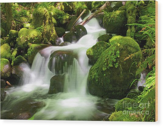Columbia Gorge Stream Wood Print