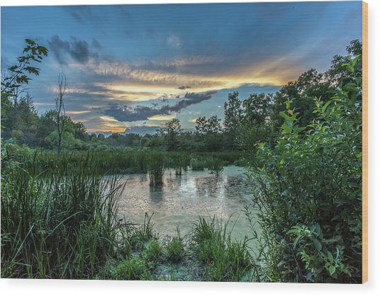 Columbia Marsh Sunset Wood Print