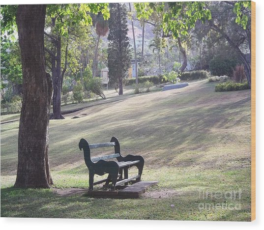 Come And Rest Awhile Wood Print