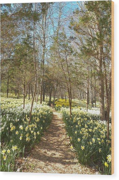 Come Walk Among The Daffodils Wood Print