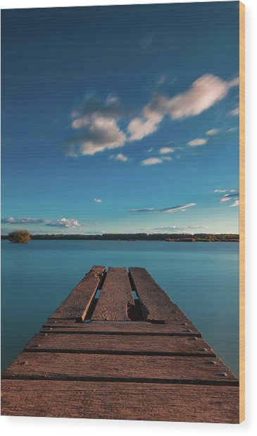 Wood Print featuring the photograph Comfortably Numb by Davor Zerjav
