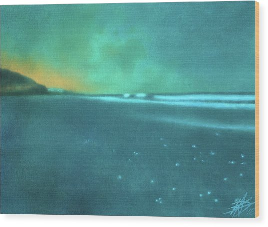 Luminescence At Torrey Pines Wood Print by Robin Street-Morris