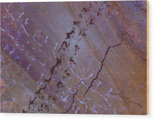 Comings And Goings Wood Print by Deborah Hughes