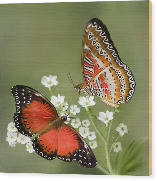 Common Lacewing Butterfly Wood Print
