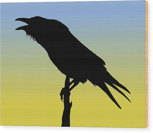 Common Raven Silhouette At Sunrise Wood Print