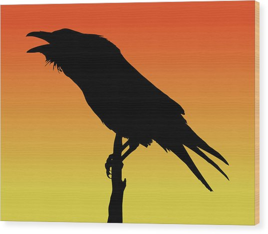 Common Raven Silhouette At Sunset Wood Print