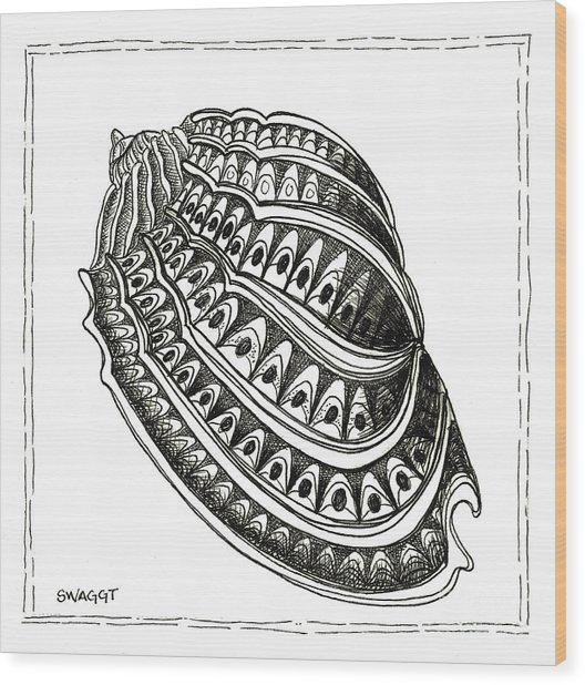 Conch Shell 1 Wood Print