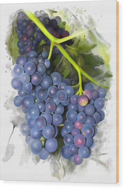 Concord Grape Wood Print