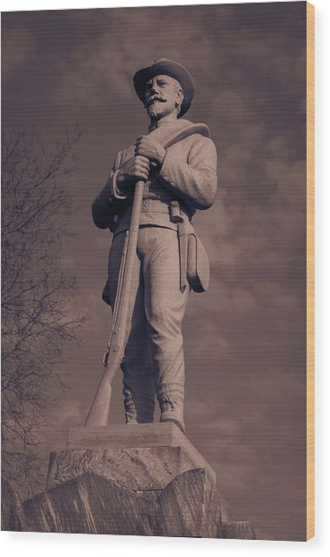 Confederate Statue  Standing Guard Wood Print