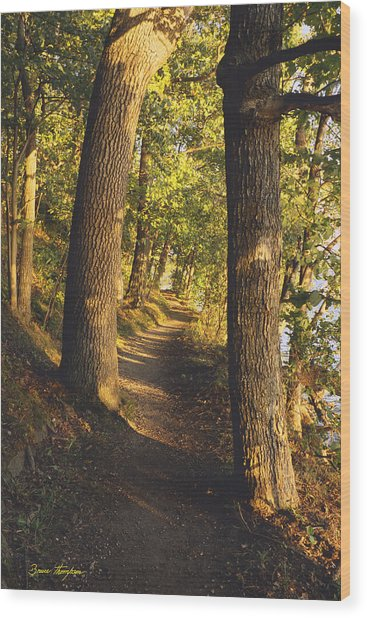 Conference Point Path - Lake Geneva Wisconsin Wood Print