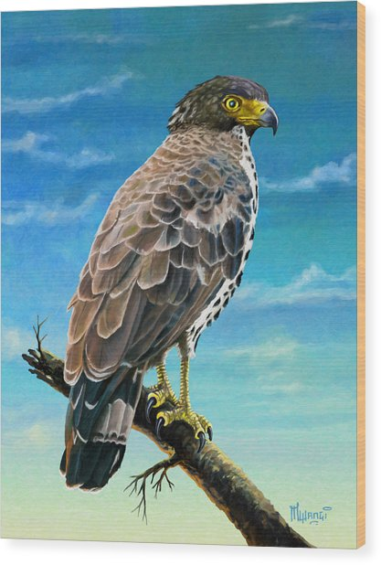 Congo Serpent Eagle Wood Print