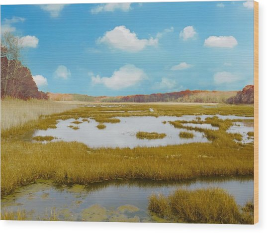 Connecticut Salt Water Marsh Wood Print