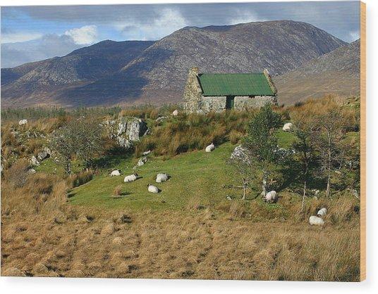 Connemara Cottage Ireland Wood Print