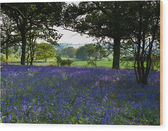 Constable Country Wood Print