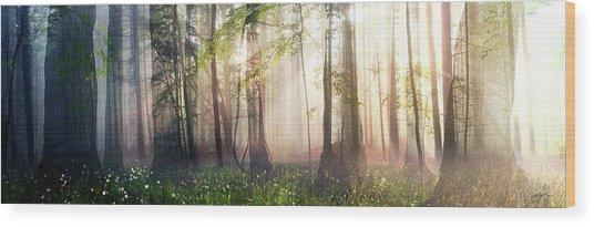 Constancy Wood Print