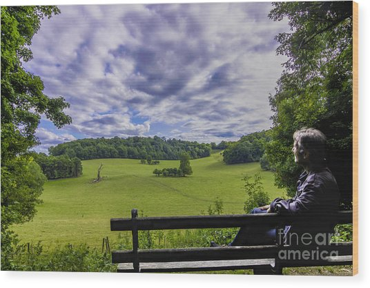 Contemplating The Beautiful Scenery Wood Print